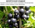Белорусская сладкая